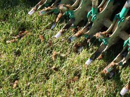 How to Aerate Your Toledo Yard